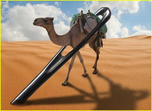 Es más fácil que un camello pase por el ojo de una aguja a que un rico entre al Reino de los Cielos