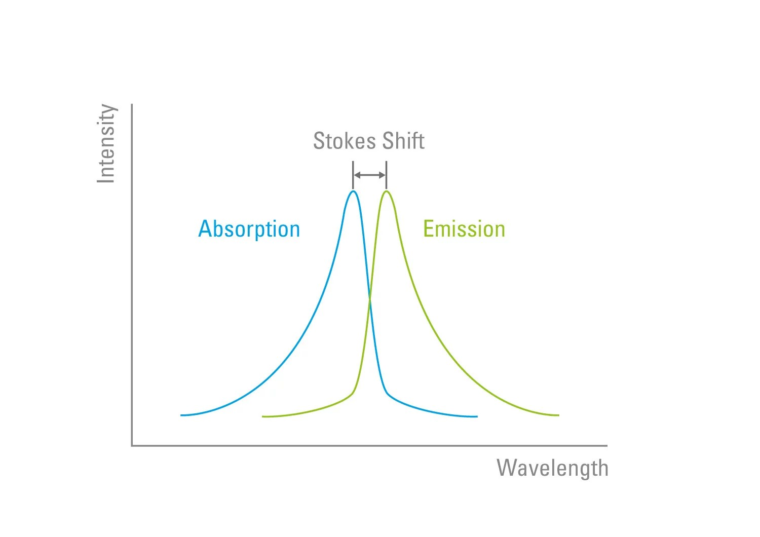 hight resolution of figure 4 stokes shift the wavelength of the emission light is always longer than that which was used to excite the fluorophore