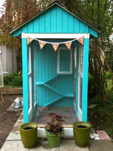 I know its a chicken house but it would make a great cat house too.  My cats love it outside but putting t