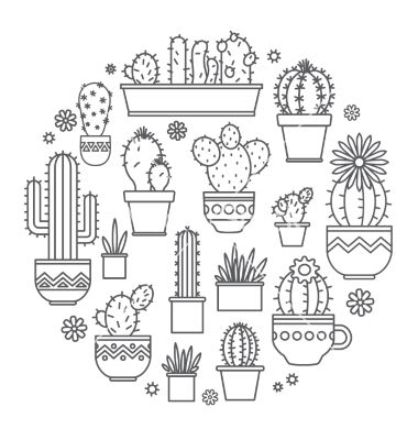 Linear design potted cactus elements. succulent vector  – by Leyasw on VectorStock®