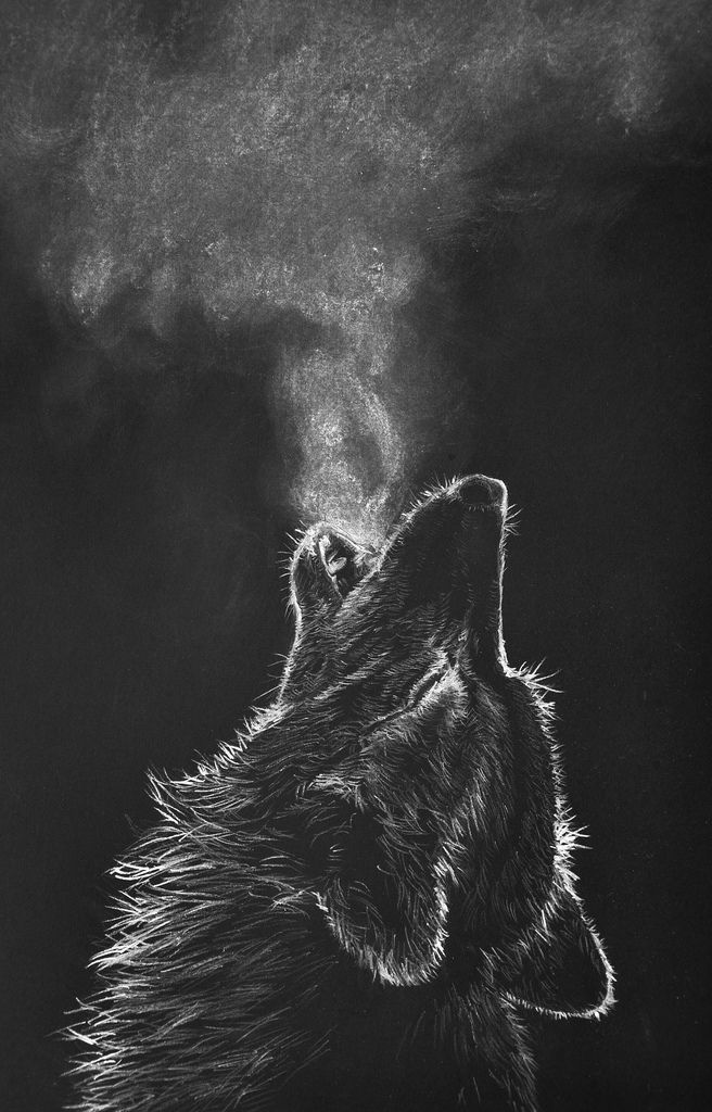 flic.kr/p/BeHLLc | howling wolf | white color pencil drawing on black paper