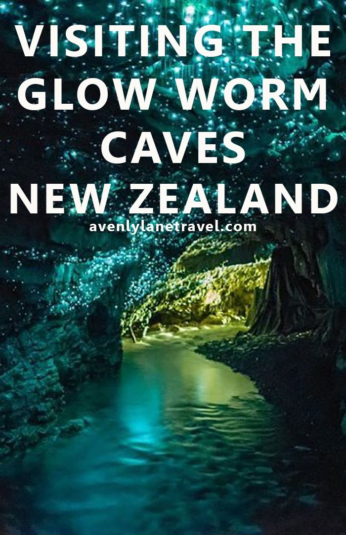 Visiting The Glow Worm Caves In New Zealand. This is a MUST see if you are ever travelling to New Zeal