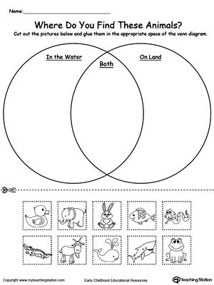 Venn Diagram Animals In Water And On Land: Practice sorting items into groups based on attributes by u