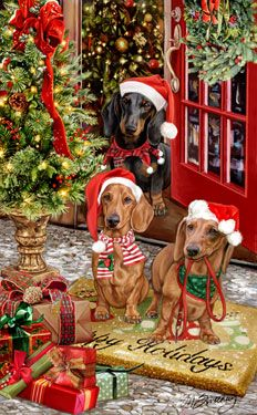 New for 2013! Dachshund Christmas Holiday Cards are 8 1/2″ x 5 1/2″ and