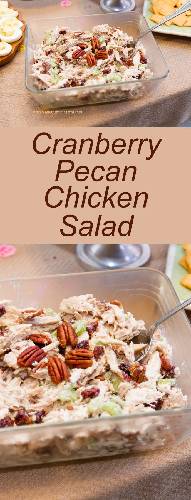 Cranberry Pecan Chicken Salad – Life Currents