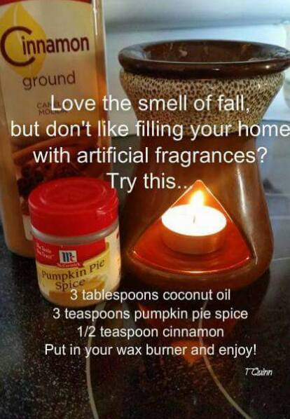 Mmmmm…this would make the house smell incredible! Find oil warmers here: amzn.to