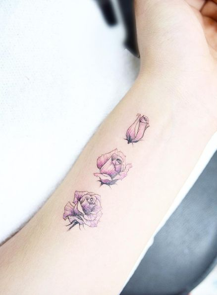 A rose in various stages of bloom by Banul