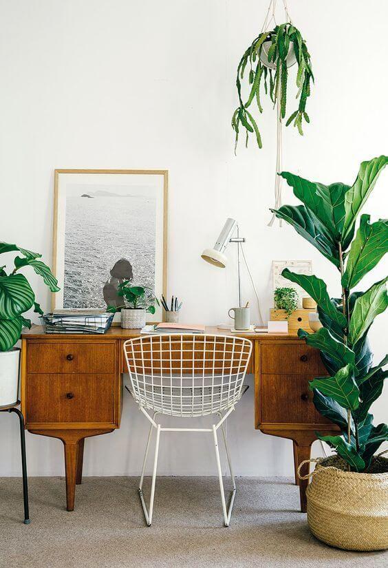 Scandi Home Office Indoor Plants – Scandinavian Interiors