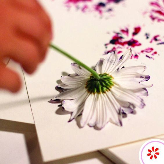 Use flower heads of different shapes as stamps to make cool watercolour style abstract flower print shapes on cards, paper, or