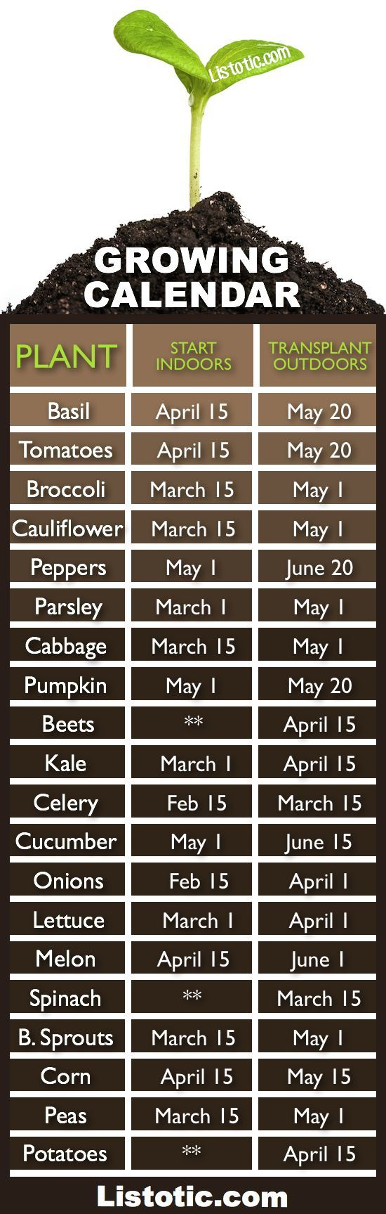 Vegetable garden growing calendar with starting and transplanting dates. If only I had a green thumb, Ill stick to my silk flowers
