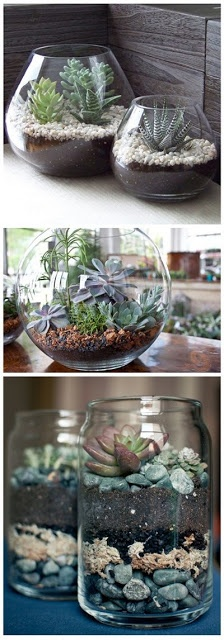 Really affordable terrariums – if you do it yourself you can personalise them and they look beautiful