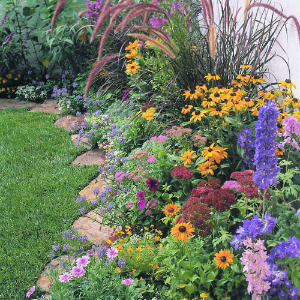 some ideas for the new beds by the deck.  I have some of these flowers that I can transplant.