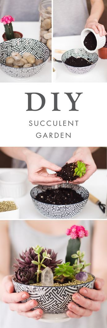 When you add trendy plants to modern home decor idea what do you get? This super simple DIY Succulent Garden project! Choose your