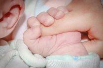 baby-428395_1920