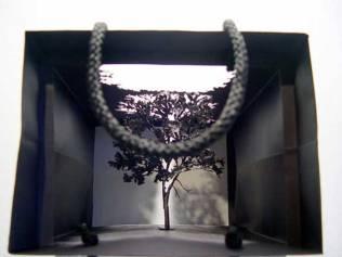 copac-2