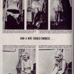 Sase lectii de striptis pentru neveste