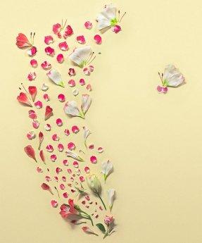 instalatie florala