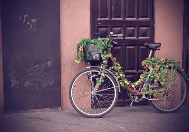 viata-bicicleta