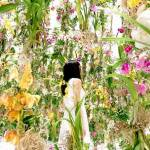 Văzduhul din flori