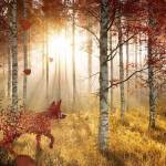 Bate vântul frunzele