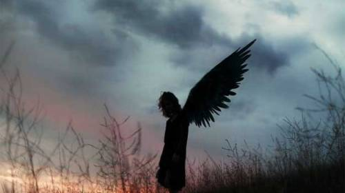 Vis cu zbor de îngeri