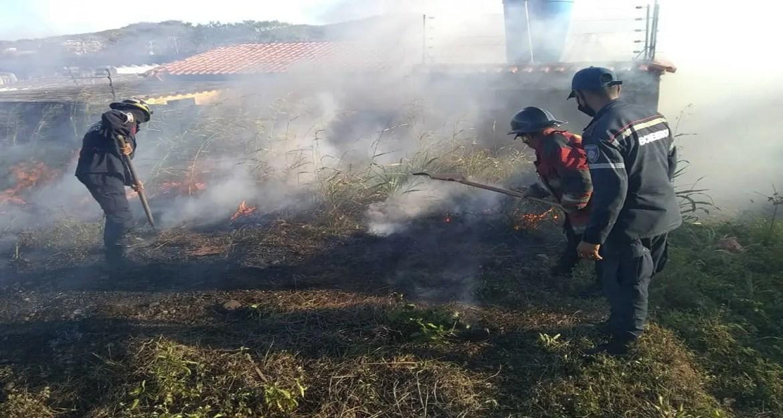 Bomberos combaten incendio forestal