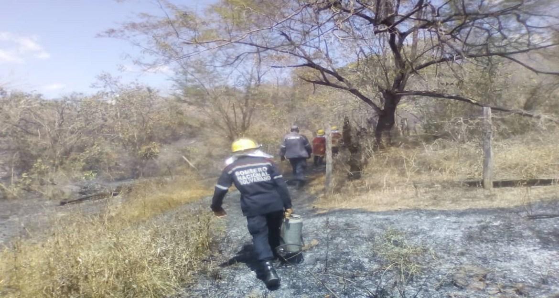 Más afecciones respiratorias por incendios forestales