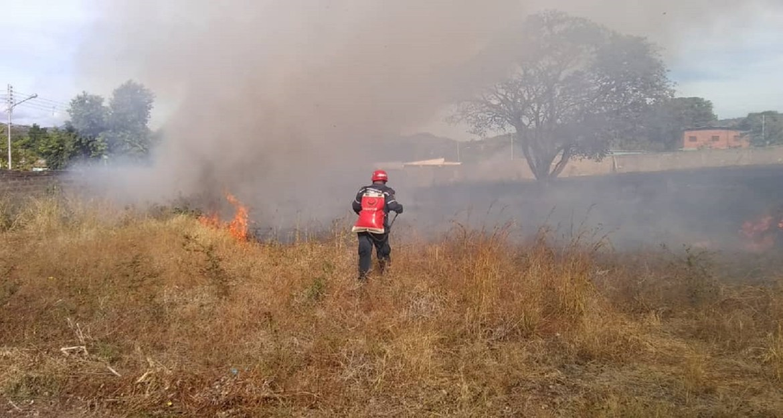 Sofocaron incendio en terreno de La Gaviota