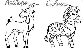 Dibujos De Animales Salvajes Para Imprimir Web Del Maestro