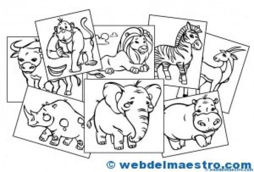 Animales Para Colorear Ii Web Del Maestro