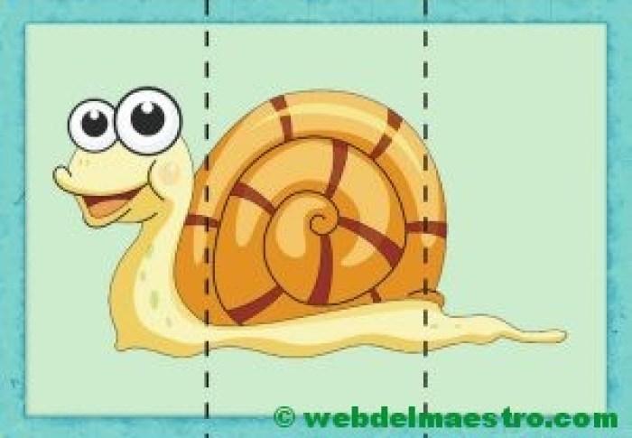 puzzle de caracol