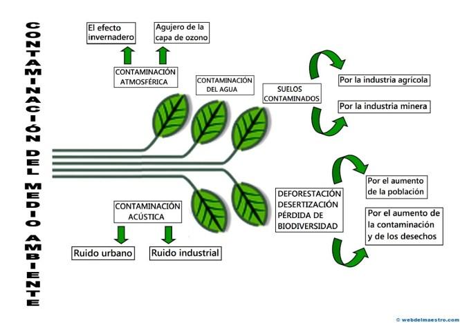 Contaminación del medioambiente