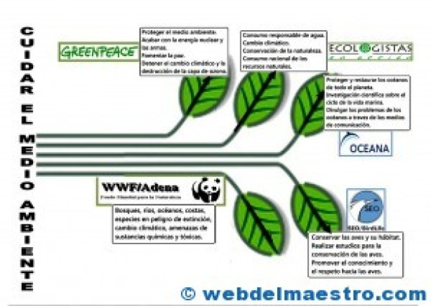 Cuidar el medioambiente