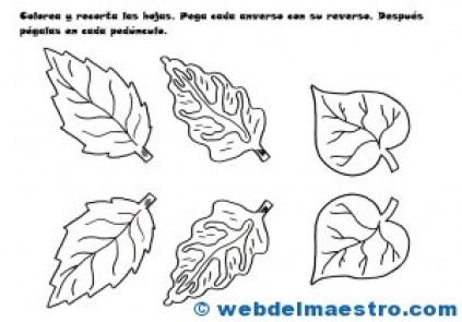 Hojas para flores de papel