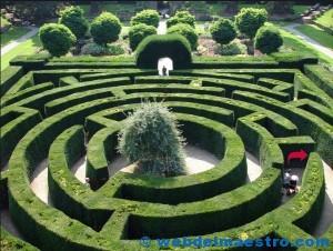 Laberinto-jardín