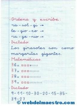 Ficha 8