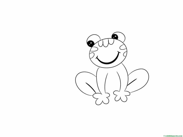 dibujar-paso-a-paso-rana-15