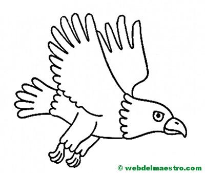 best Dibujos De Aguilas Para Niños image collection