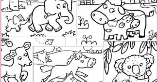 Dibujos De Animales Con Sus Crías Para Descargar E Imprimir