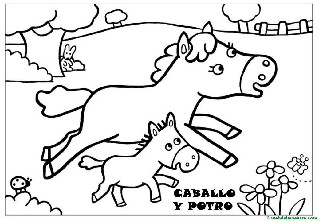 Caballo Y Potrillo