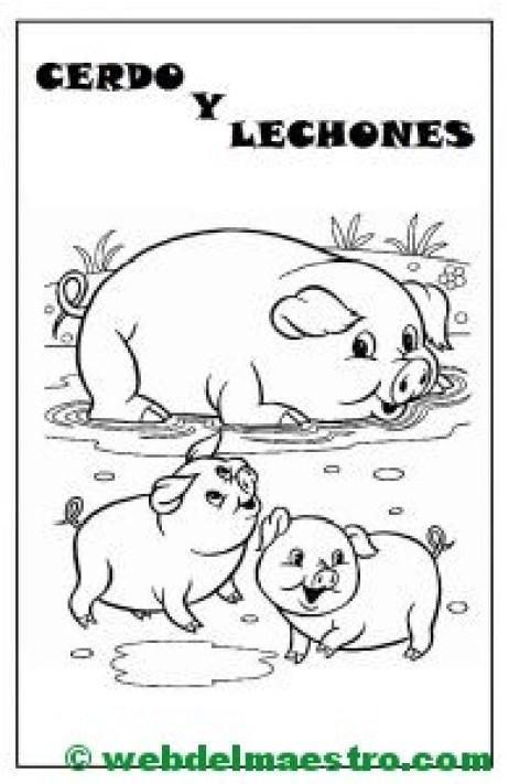 cerdo y lechones