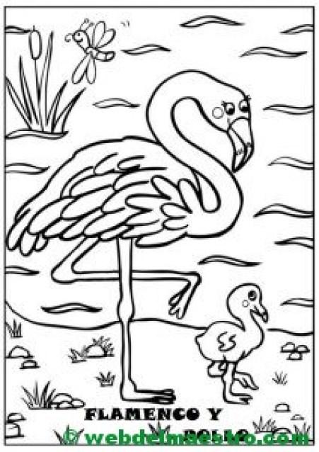 flamenco y pollo