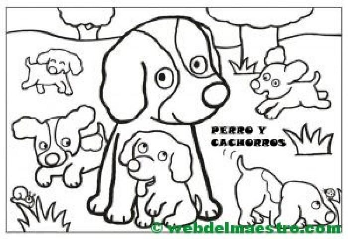 perro y cachorros