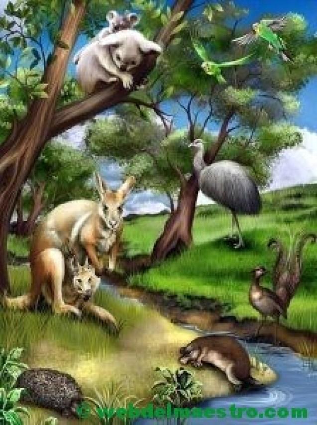 Animales de Oceanía