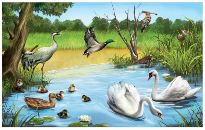Animales de los lagos y lagunas
