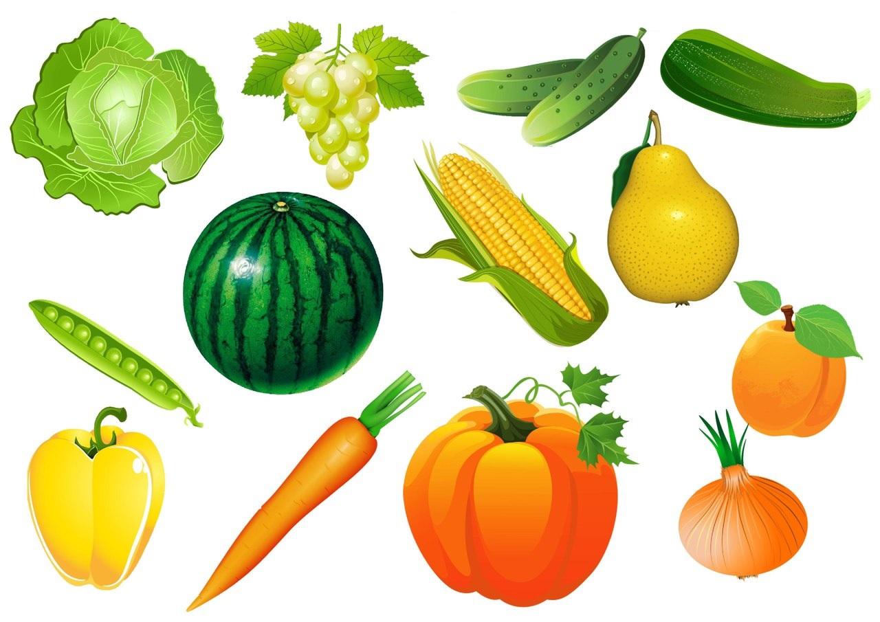 Color Tool Dibujos De Frutas Y Verduras Web Del Maestro