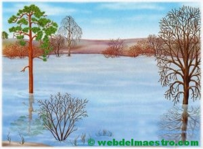 Inundación