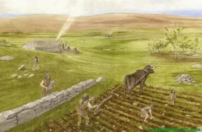 La agricultura-el arado