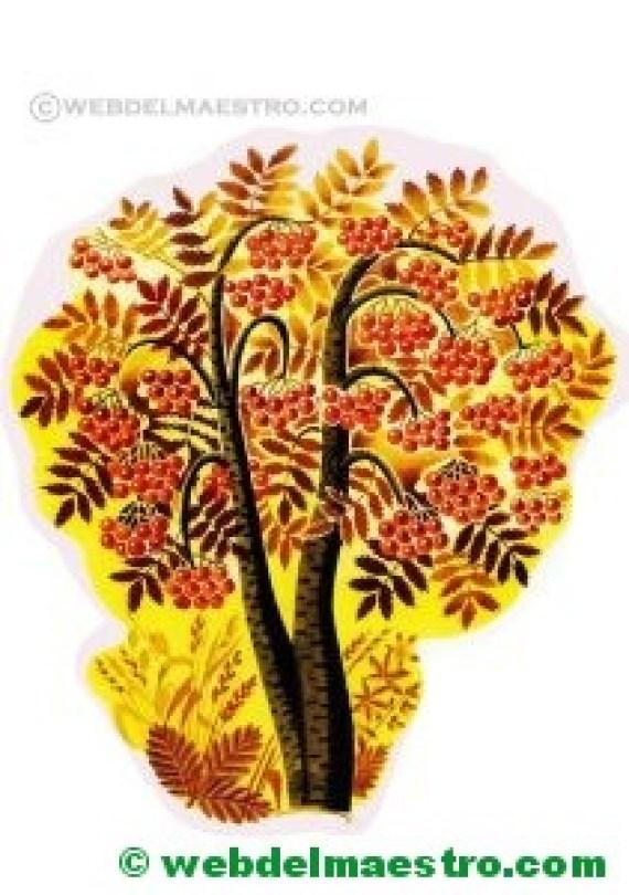árboles y arbustos del otoño