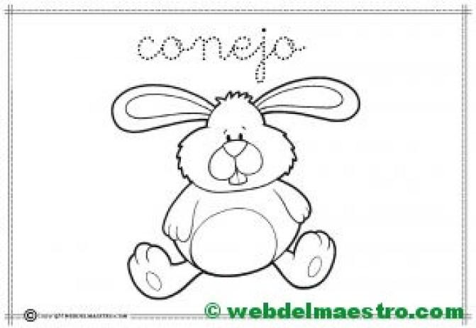 10-conejo